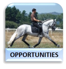 Caballos Opportunities